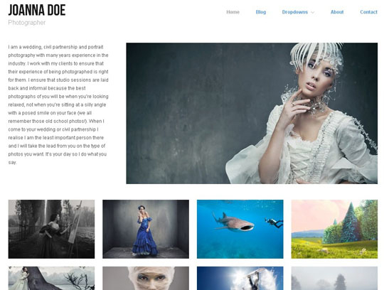 Collection of Free Responsive WordPress Themes